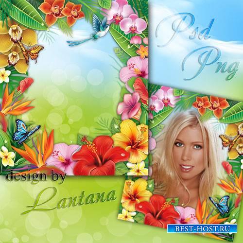 Psd исходник - Тропический рай