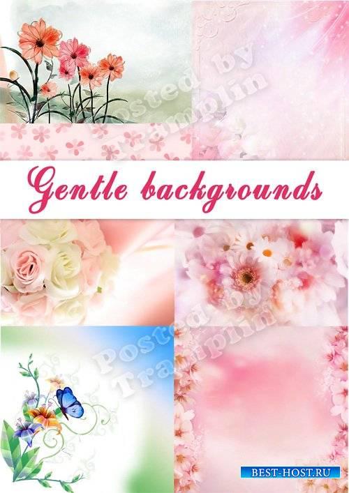 Нежные фоны  - Цветочный микс