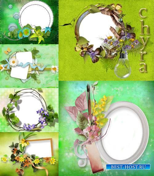 Зеленые рамки для фотографий