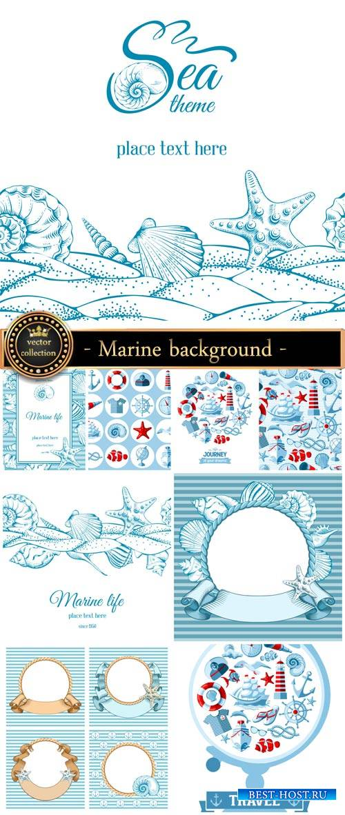 Marine background and elements in the vector