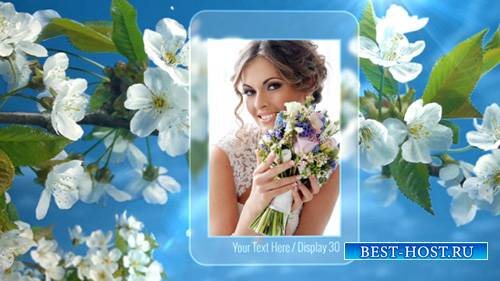 Photo Gallery Spring Blossoms - Project for After Effects (Videohive)
