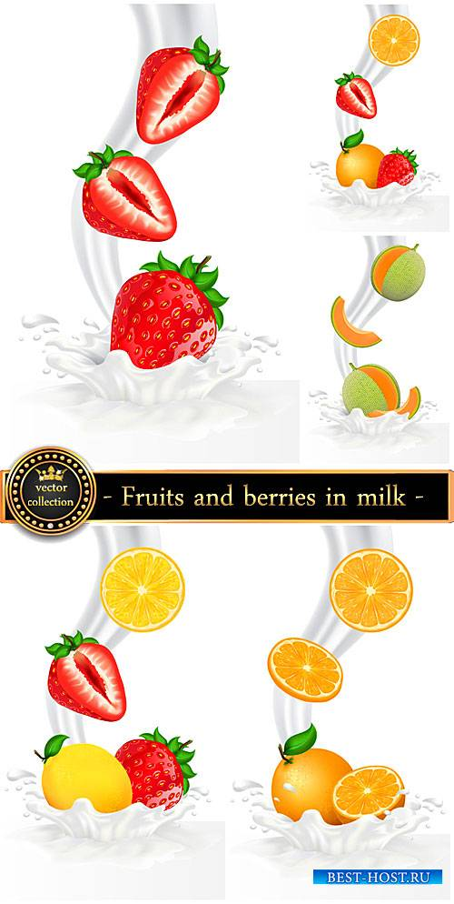 Fruits and berries in milk, vector