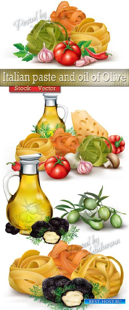 Итальянская паста и масло Оливы в Векторе