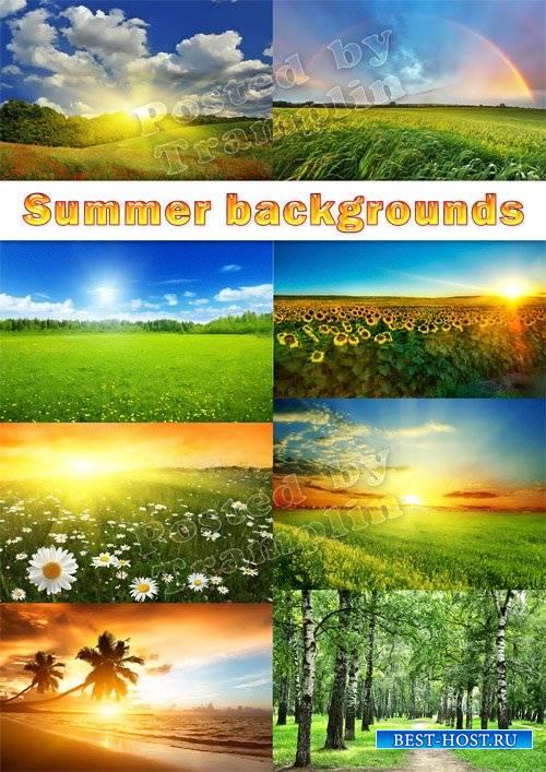 Летние фоны пейзажи – Солнце, поле, цветы