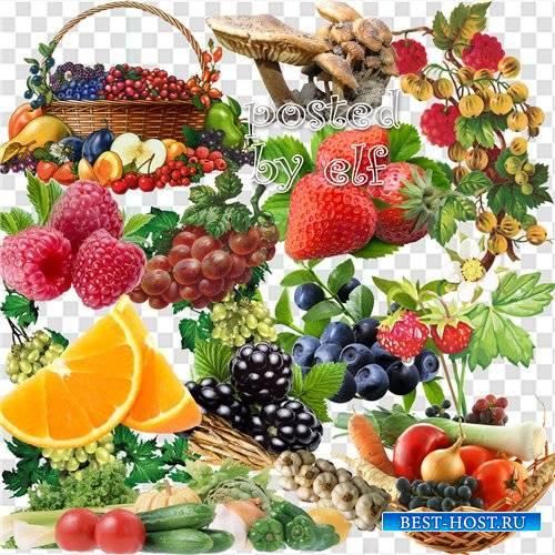 Подборка клипарта – Фрукты, овощи, грибы