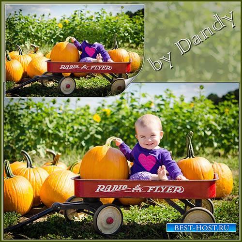 Шаблон для фотошопа – маленький мальчишка фермер