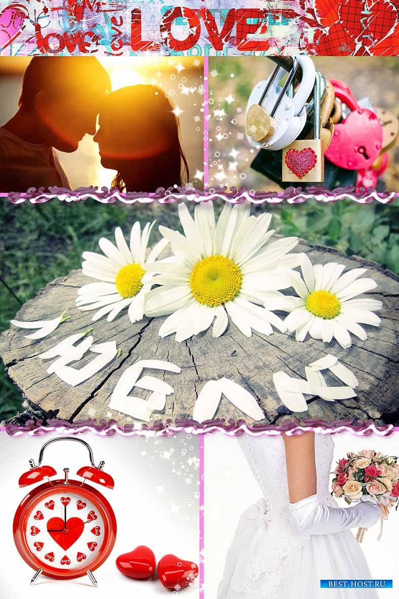 букеты цветов фото из гвоздики