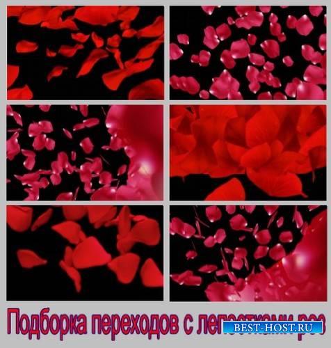 Подборка переходов с лепестками роз