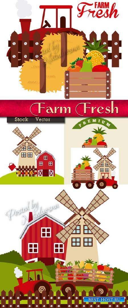 Ферма для выращивания свежих овщей и фруктов в Векторе