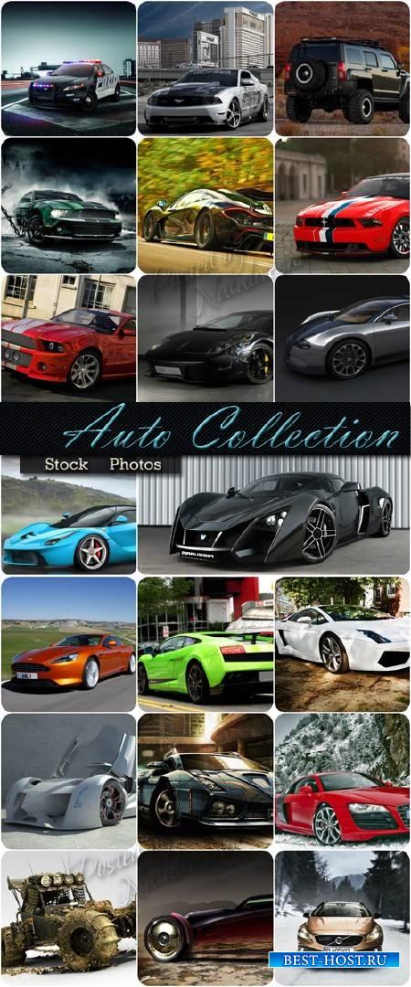 Большая коллекция Авто разных марок и цветов