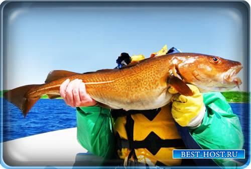Psd шаблон - Рыбак, рыба, море