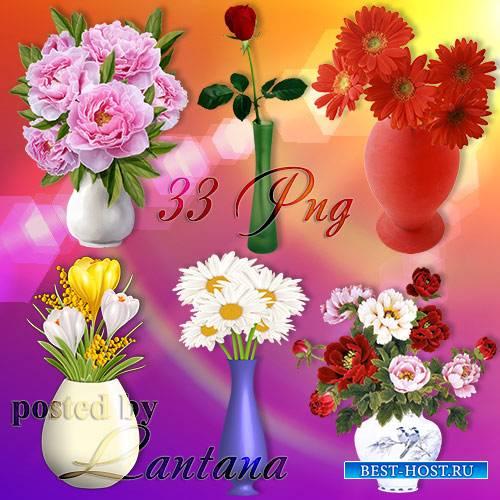 Клипарт на прозрачном фоне - Вазы с цветами