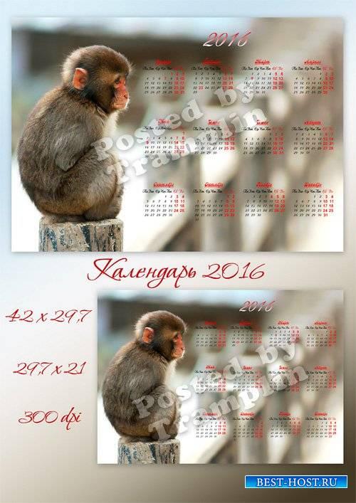 Настенный календарь на 2016 год с обезьянкой