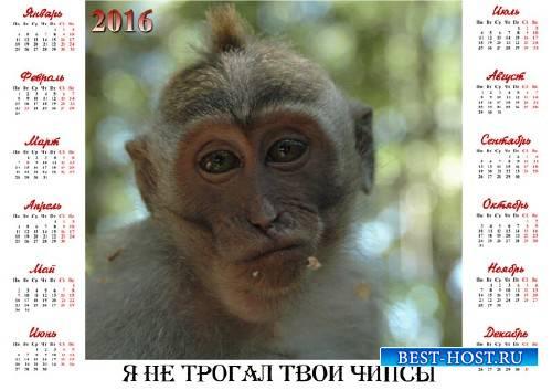 Календарь 2016 - Честная обезьяна