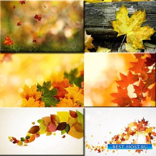 Фоны для фотографий - Осень пришла
