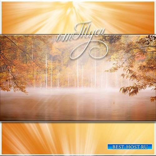 Осенний лес - Футажи для видеомонтажа