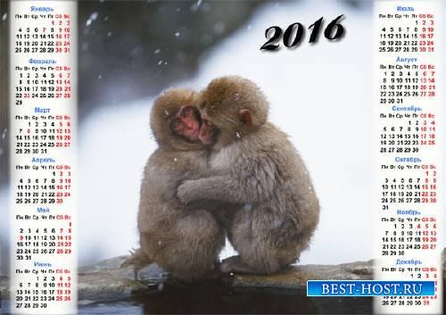 Настенный календарь - 2 обезьянки греются зимой