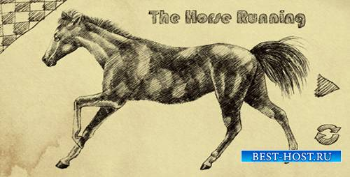 THE HORSE RUNNING - Motion Graphics (Videohive)