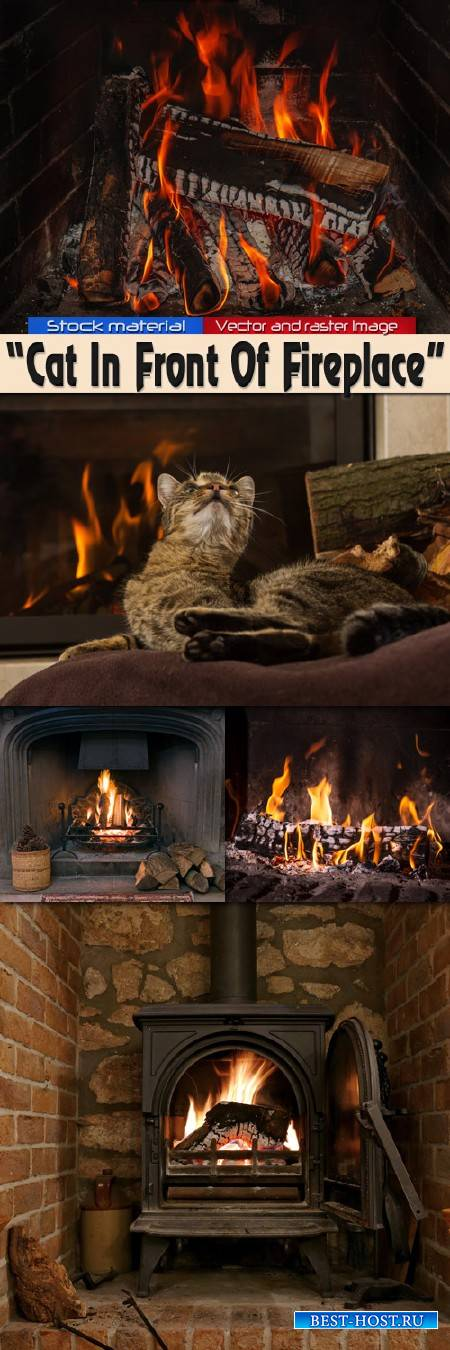 Шикарный кот у камина с горящими поленьями