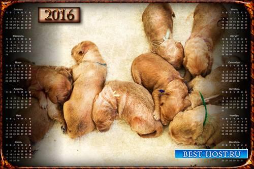 Настенный календарь - Маленькие щенки