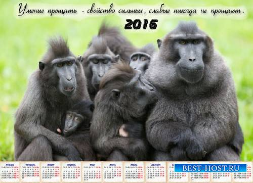 Календарь 2016 - Понять и простить