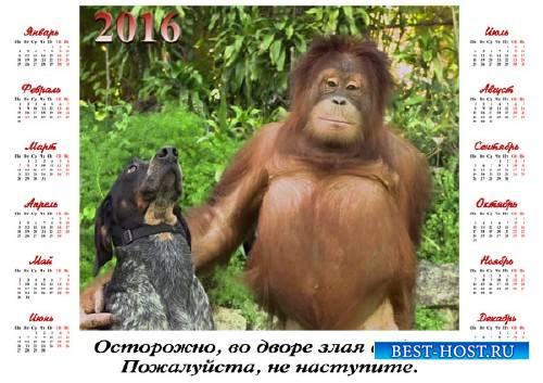 Красивый календарь - Орангутанг с собакой