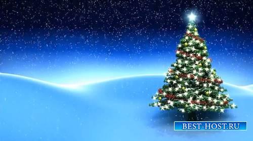 Футаж - Новогодняя ёлка в огнях