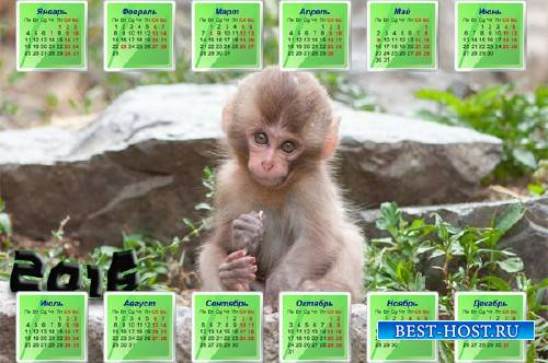 Маленькая обезьяна на камне - Календарная сетка