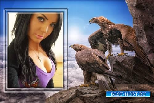 Рамка для фотографии - Два орла любуются фотографией