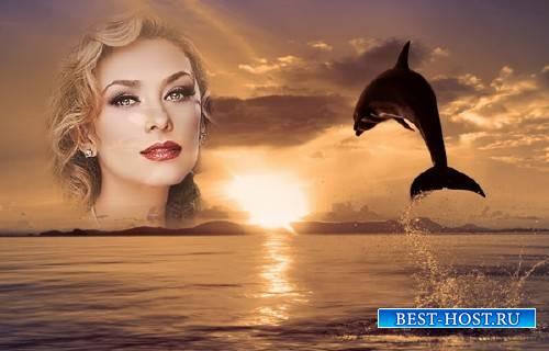 Рамка для фотографии - Дельфин на закате