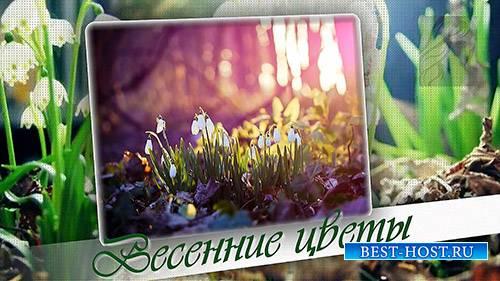 Проект Весенние цветы - ProShow Producer Project