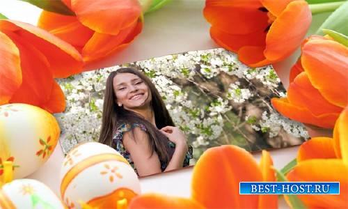 Рамка для фотографии - Весенние цветы на фото