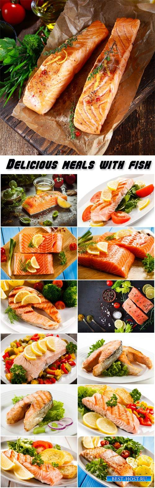 Delicious meals with fish
