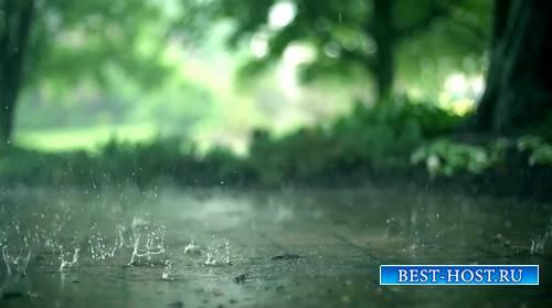 Футаж - Летний дождь