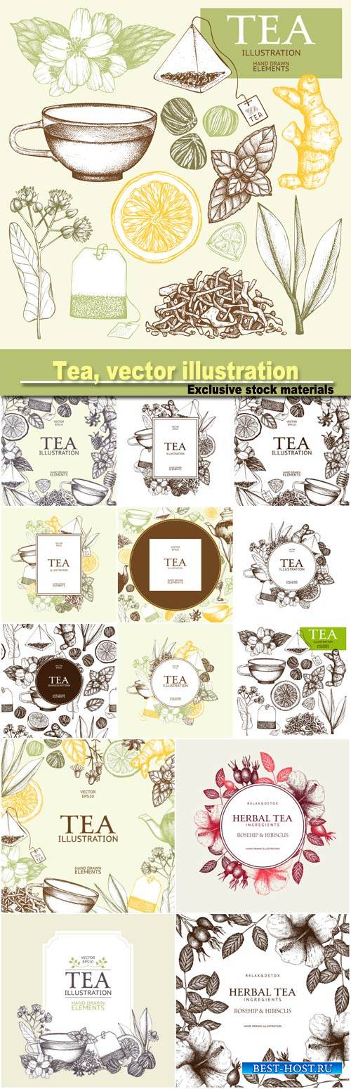 Tea, vector illustration