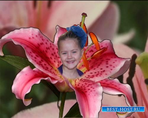Футаж для видео монтажа - Мой любимый цветочек