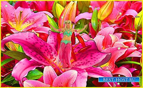 Футаж фона - Цветочное поле с сюрпризом