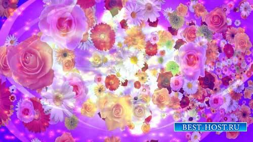 Футаж фона - Полет цветов на розовом