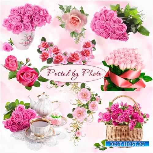 Клипарт на прозрачном фоне - Розовые розы