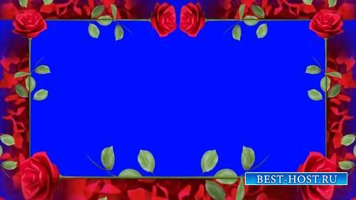 Футаж на хромакее - Рамка из красных роз