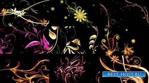 Футажи эффекты - Анимационные цветы