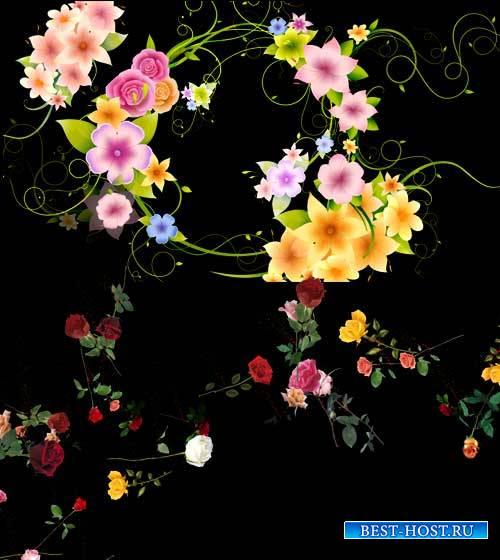 Футажи эффекты - Разбег цветов
