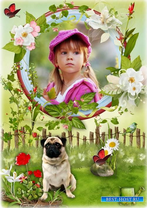 Цветочная рамка для фото с собачкой мопс - Чудесный летний день