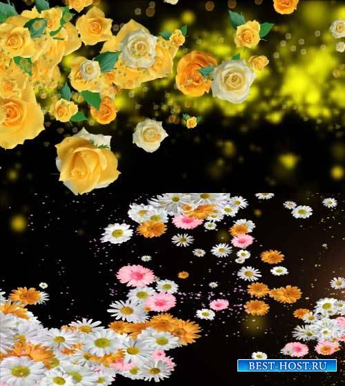 Футажи эффекты - Цветов много не бывает
