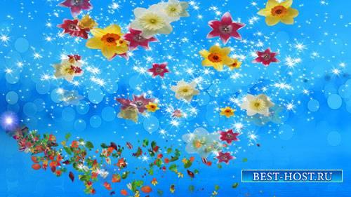 Футаж фона - Полет цветов