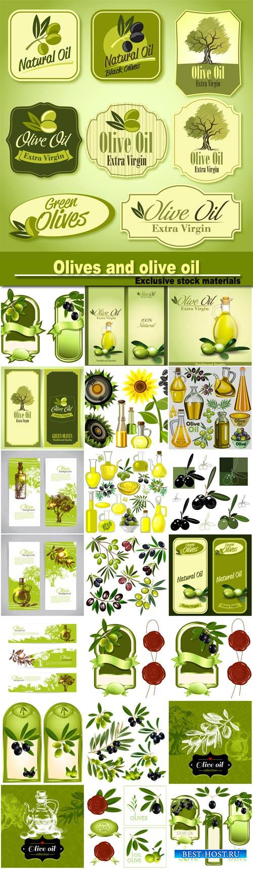 Olives and olive oil labels and backgrounds vector