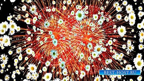 Футажи эффектов - Цветочный взрыв