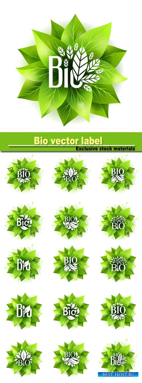 Bio label, vector badge with green leaves