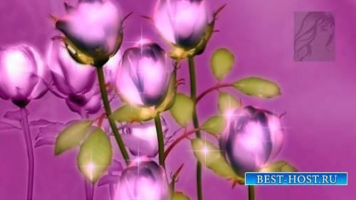 Набор цветочных футажей с розами (10 штук) (footages)