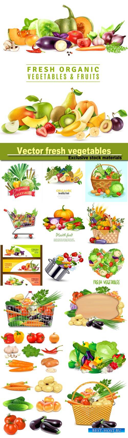 Vector set of fresh vegetables, healthy eating